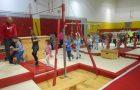 Dan gimnastike v športni dvorani Brežice